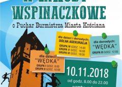 Drugie Zawody Wspinaczkowe o Puchar Burmistrza Miasta Kościana
